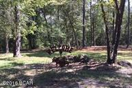 3642 River Road Sneads FL, 32460