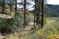 2805 County Road 335 Pagosa Springs CO, 81147