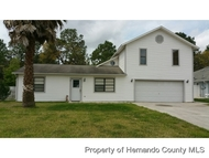 3211 Greynolds Ave Spring Hill FL, 34608