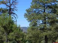 X County Rd 500 Pagosa Springs CO, 81147