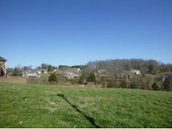 205 Forest Court, Lot 3 Blountville TN, 37617
