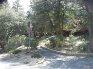 27690 Saunders Meadow Road Idyllwild CA, 92549