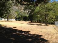 0 Melody And Alder Lane #181 Lytle Creek CA, 92358