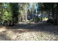 53651 Road 432 Bass Lake CA, 93604
