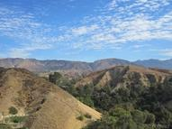 11319 Overlook Trail Kagel Canyon CA, 91342
