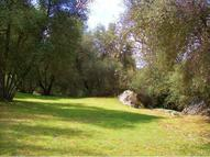 3 Deer Creek Drive  #3 Oakhurst CA, 93644