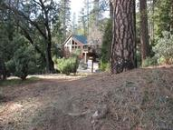 59 Lot #59 Dogwood Creek Drive  #59 Bass Lake CA, 93604