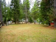 53939 Road 432 Bass Lake CA, 93604