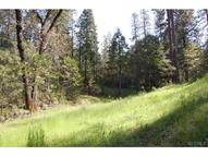64 Lot 64 North Shore Rd Bass Lake CA, 93604