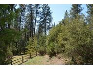 4 Granite Ridge Lane Bass Lake CA, 93604