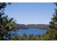 101 Fremont Road Lake Arrowhead CA, 92352