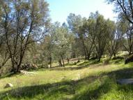 0 Gold Miners Creek Road #C Mariposa CA, 95338
