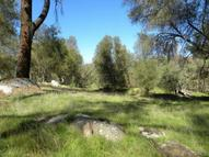 0 Gold Miners Creek Road #R Mariposa CA, 95338