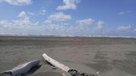 13 Chickamin Ave Ocean Shores WA, 98569