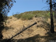0 North Trail Kagel Canyon CA, 91342