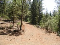 7 Bagshot Road Forest Ranch CA, 95942