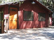 957 San Antonio Creek Road Mount Baldy CA, 91759