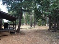 7541 Humboldt Road Forest Ranch CA, 95942