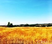 28390 Road 210 Exeter CA, 93221