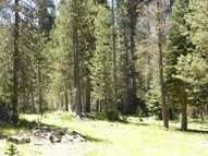 0 Grizzly Road Bass Lake CA, 93604