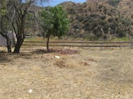 0 Kagel Canyon Road Kagel Canyon CA, 91342