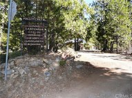 21610 Malloy Creek Trail Forest Ranch CA, 95942