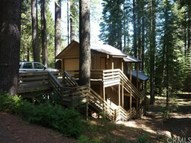 7709 Forest Drive Fish Camp CA, 93623