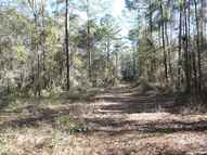Tbd Rocky Branch Road Monticello FL, 32344
