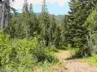 Nna Nason Ridge Rd. Leavenworth WA, 98826