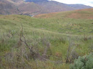 Lot 4 Nna Blue Grade Rd East Wenatchee WA, 98802