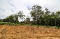 4405 St. Ives Ct. Lot 334 Arrington TN, 37014