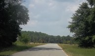 Lot 7 Courtney Lane Blackshear GA, 31516