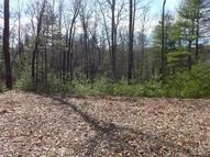 88 Summer Haven Drive Lot 3 Cedar Mountain NC, 28718