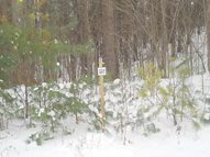 Lot 15 Whispering Pines St Prairie Farm WI, 54762