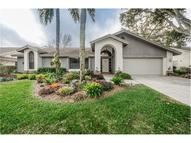 3268 Cobbs Drive Palm Harbor FL, 34684
