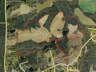 12 Old Cassidy Road (318 Acres Thomasville GA, 31792
