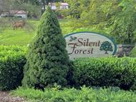 18 Silent Forest Drive 18 And 20 Canton NC, 28716