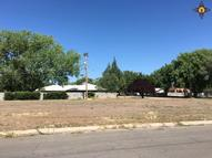 412 N Mulberry Roswell NM, 88201