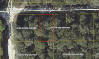 Lot 16 470th Ave Old Town FL, 32680