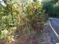 Tract 2a Spurling Way Sevierville TN, 37862