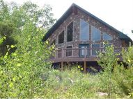 23000 County 67 Road Florissant CO, 80816