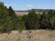 Lot 48 Green Meadow Drive Ramah NM, 87321
