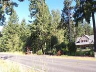 0 Se Wildcat Mountain Dr Eagle Creek OR, 97022