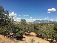 Lot 2 Fruitland Mesa Crawford CO, 81415