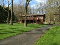 239 Dyson Rd Swiftwater PA, 18370
