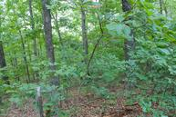 Lot 1 Misty Mountain Drive Bruner MO, 65620