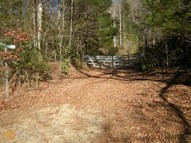 100 Lookoff Mountain  20.22 Mountain City GA, 30562