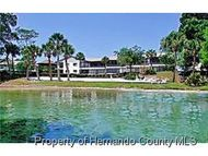 6492 River Lodge Ln Weeki Wachee FL, 34607