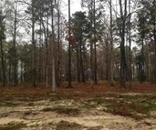 Lot 14 Twisted Oak Lane Chatham LA, 71226