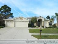 13375 Newcastle Ave Spring Hill FL, 34609